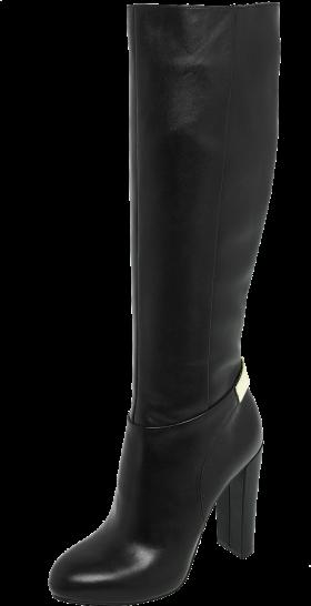 Hugo Boss Boots Womens PNG