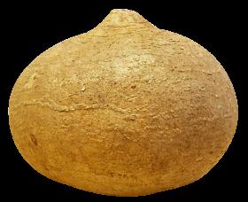 Jicama PNG
