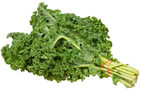 Kale Bundle PNG