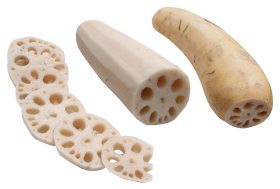 Lotus Root PNG