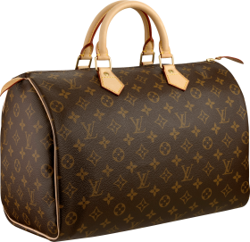 Louis Vuitton Women bag PNG