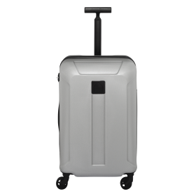 Luggage PNG