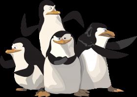 Madagascar Penguin PNG