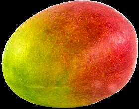 Mango juicy PNG