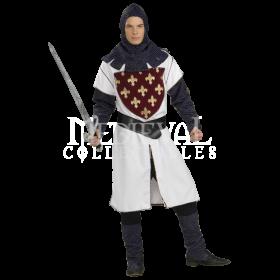 Medival Knight PNG