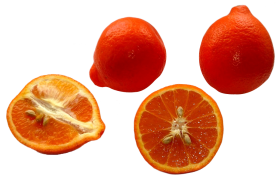 Minneola Tangerines PNG