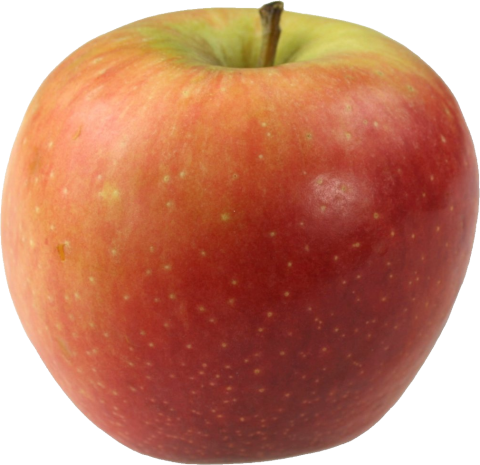 Multicolored Apple PNG