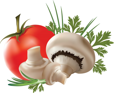 Mushroom with Tomato PNG
