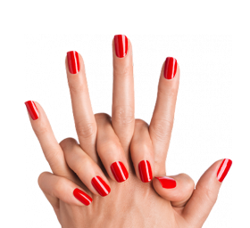 Nails Color PNG