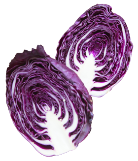 Napa Cabbage Purple PNG