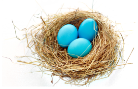 Nest PNG