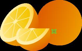 Orange | Orange PNG