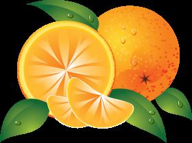 Orange | Oranges PNG