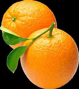 Oranges PNG