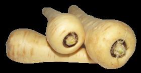 Parsnip PNG