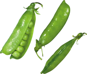 Pea PNG