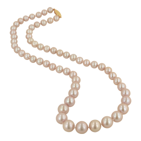Pearl  String PNG