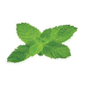 Pepermint PNG