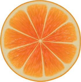 Perfect Orange Halved PNG