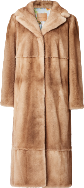Fur Coat Ladies PNG