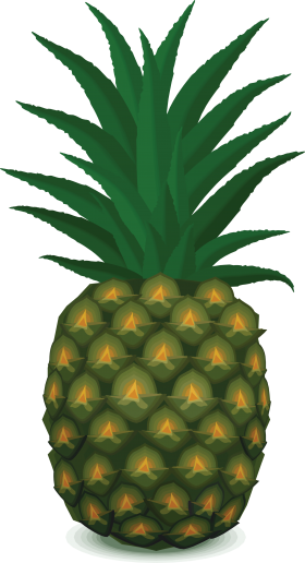 Pinapple Clipart PNG