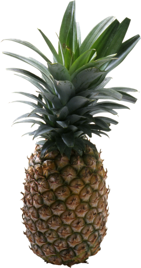 Pineapple PNG
