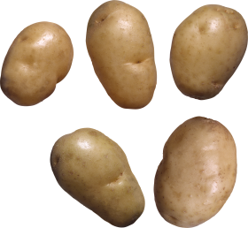 Potato PNG