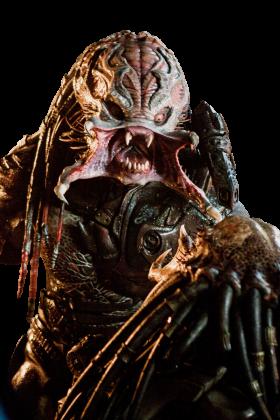 Predator PNG
