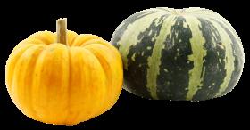 Pumpkins PNG