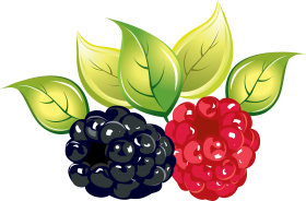 Rasberry Clipart PNG