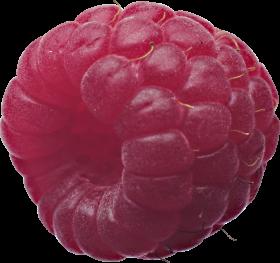 Rasberry PNG