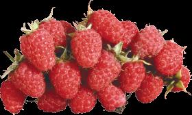 Rasberrys PNG