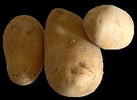 Raw Potato PNG
