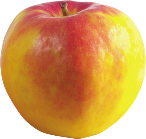 Red and yellow Apple PNG