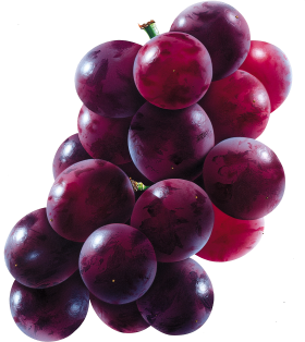 Red Grapes PNG