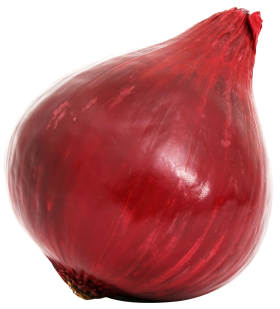 Red Onion Bulb PNG
