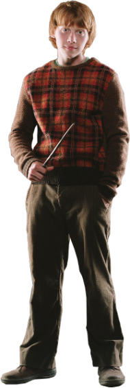 Ron Weasely PNG