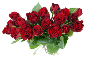 Rose Bouquet PNG