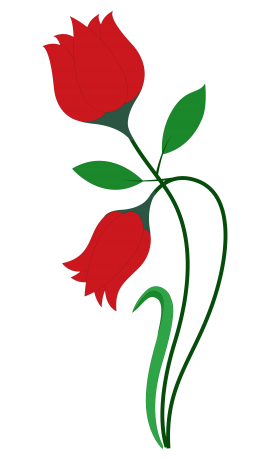 Rose Flower Vector PNG