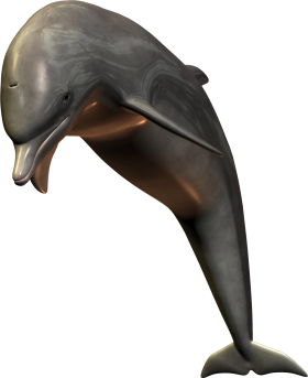 Silver Bottlenose Dolphin Jumping PNG
