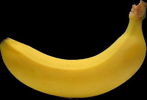 Single Banana PNG