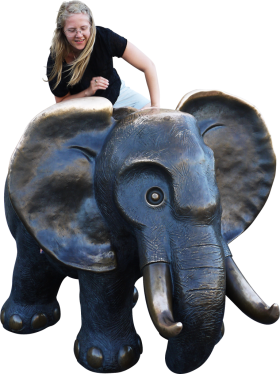Sitting Elephant PNG