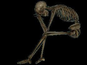 Skeleton, Skull PNG