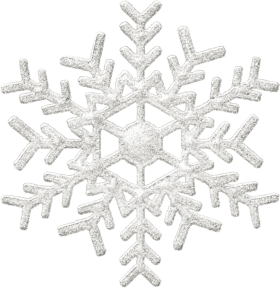 Snowy Snowflake Winter PNG