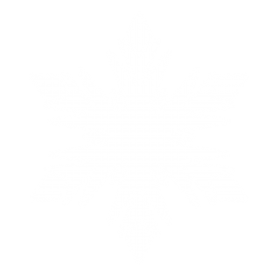 Snowflake Snowy Christmas PNG