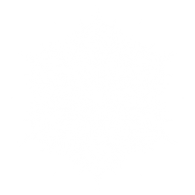 Snowflake White Frosty PNG