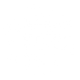 Decorative Snowflake PNG