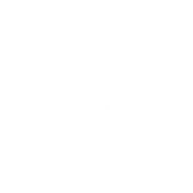 Snowflake Snowy Ice PNG