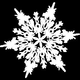 White Tiny Snowflake PNG