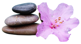 Spa Stone PNG